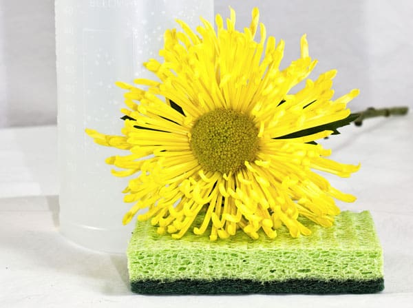 Use-These-4-Natural-Ingredients-to-Clean-Your-Home