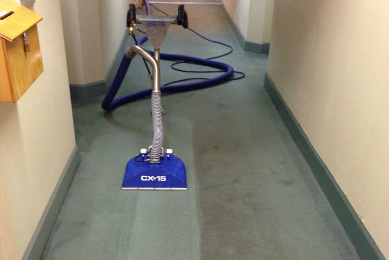 Victoria S Favourite Commercial Carpet Care Aquamist